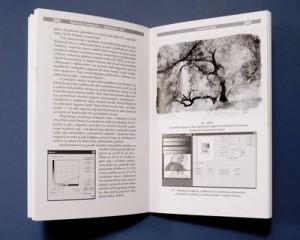 Strany publikace 7x10 palců